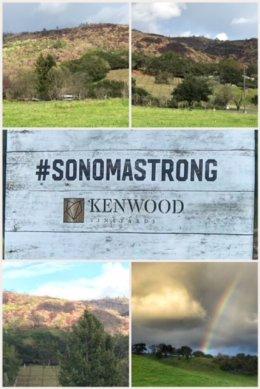 Sonoma Strong