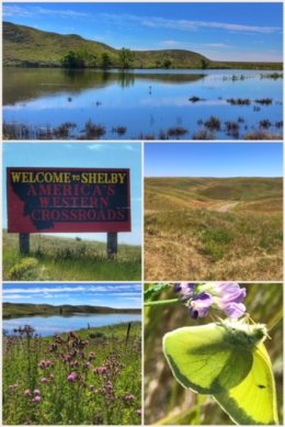 Shelby, MT, pictures