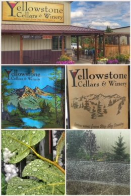 Yellowstone Cellars Winery