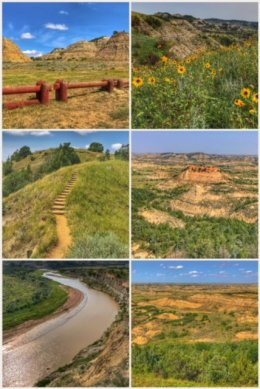 Theodore Roosevelt National Park collage