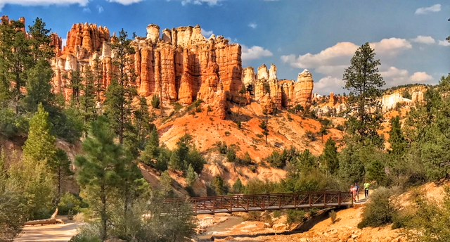 Bryce Canyon National Park; Mossy Cave Trail