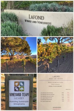 LaFond Vineyard Winery