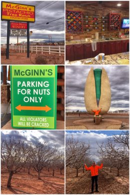 McGinn's Arena Blanca Winery