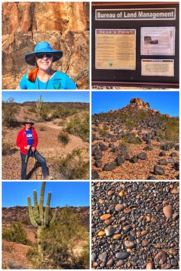 Sear's Point, Arizona, picture collage