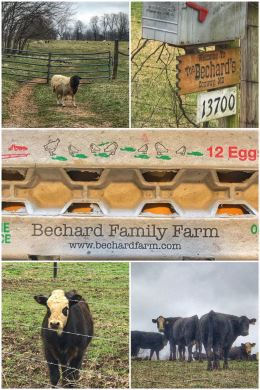Bechard Family Farm