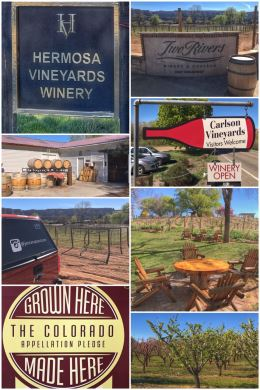 Grand Junction, Colorado, wine-tasting