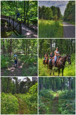 Oak Openings Preserve Metropark