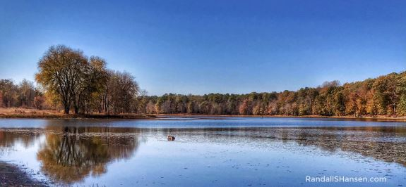 Cash Lake, Patuxent Wildlife Research Center