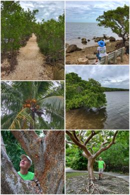 Biscayne National Park, Jetty Trail at Dante Fascell Visitor Center
