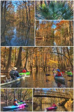 Congaree National Park, kayaking