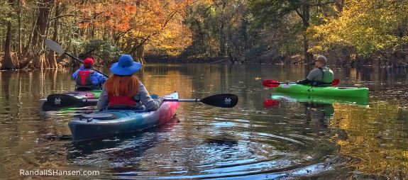 Congaree National Park kayaking