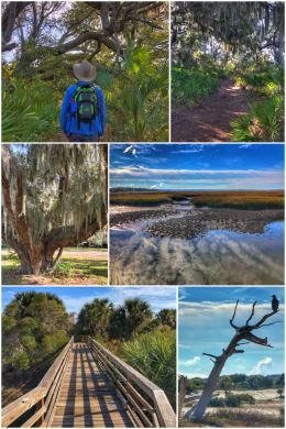 Cumberland Island hiking