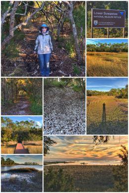 Lower Suwanee National Wildlife Refuge