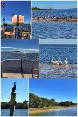 Tidewater Tours, Cedar Key