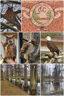 Reelfoot Lake State Park visitor center