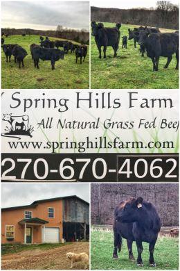 Spring Hills Farm