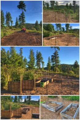 H3 Garden Plan/Set up