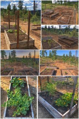 H3 garden expansion