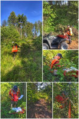H3 Surveyor: Emerson Surveying