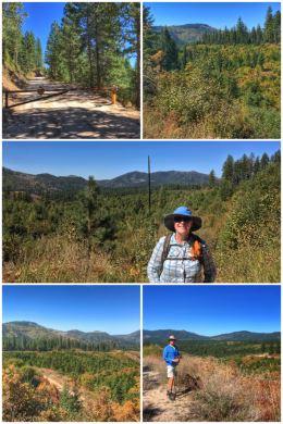 Loon Lake hiking